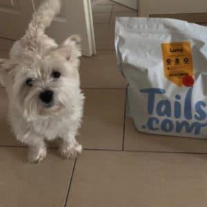 GRATIS 🐶🍲 1 Monat lang Hundefutter kostenlos testen