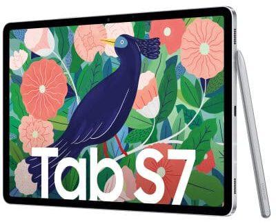 Galaxy Tab S7 SM T875N e1618410105248