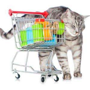 Katzenfutter Sammler Amazon scaled e1618912324987
