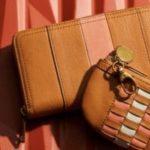 Fossil 70% Rabatt auf Lederartikel - Taschen & Geldbörsen