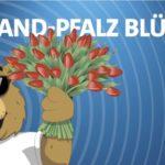 Gratis Blumensamen-Mischungvon RPR1