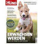 Gratis-Download für Welpen und heranwachsende Hunde
