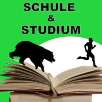 Motivationfuerschuleundstudium ebook