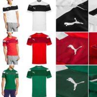 Puma Spirit II Herren Polo Shirt