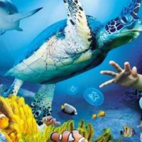 Sea Life Hannover big teaser article