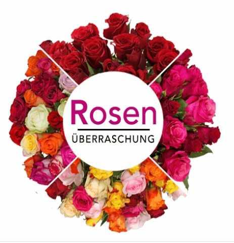 blumendeal rosenueberraschung 41 rosen fuer 2298e inkl versand