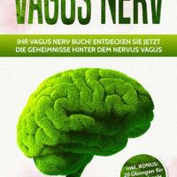 book cover2a