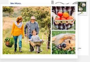 gratis postkarte weltweit versenden mypostcard