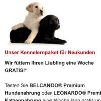 gratis testpaket hunde oder katzenfutter
