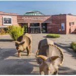 [LOKAL / Münster] GRATIS Eintritt in das LWL-Museum für Naturkunde am 13.08.20