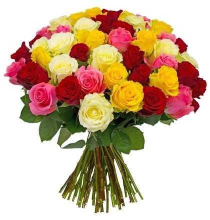 neujahrsgruesse mit 37 rosen happynewyear
