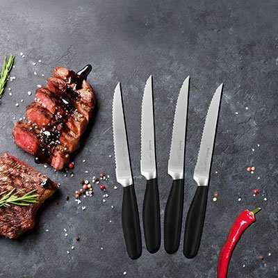 steakmessr tefal