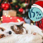 Zu Nikolaus 15 % Rabatt auf alles im Vitakraft-Onlineshop
